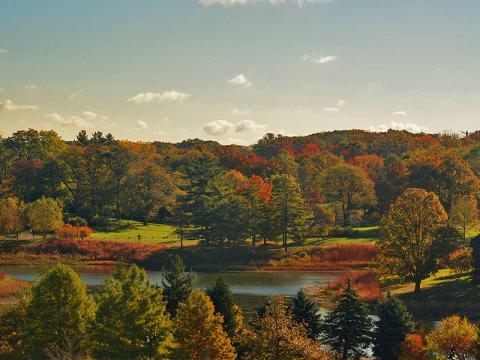 Los colores del otoño iluminan Round Meadow Lake