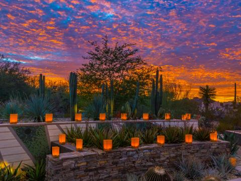 Lámparas iluminadas al anochecer durante Las Noches de las Luminarias en Scottsdale, Arizona