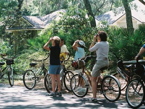 Recorrido en bicicleta para ver la vida silvestre durante el Wild Amelia Nature Festival en Amelia Island, Florida
