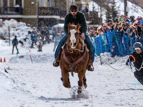 Skijoring con caballos durante los Skijor West Championships de West Yellowstone